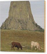 Devils Tower 2 Wood Print