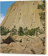 Devils Tower Four Wood Print