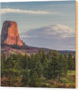 Devil's Tower Morning Wood Print