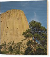 Devils Tower One Wood Print