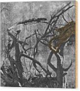 Devil's Tree Wood Print