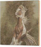 Devon The Gypsy Horse Wood Print