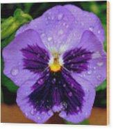 Dew Drop Butterfly Wood Print