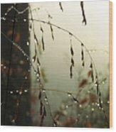 Dew Drop Garland Wood Print