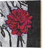 Dhalia Wood Print
