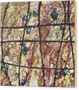 Diabolical Madness - V1vsf100 Wood Print