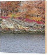 Diamond Island-mineral Deposits In Granite Wood Print