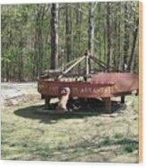 Diamond Plant In Arkansas Wood Print