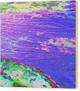 Diamond Point Lighthouse Wood Print