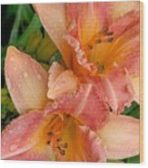 Diamonds And Lilies Watercolor Wood Print