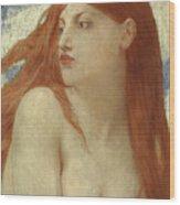 Diana, 1902 Wood Print