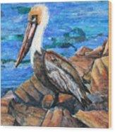 Dick The Pelican Wood Print