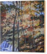 Dick's Creek Falls Wood Print