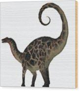 Dicraeosaurus Dinosaur Tail Wood Print
