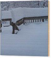 Did It Snow Last Night Wood Print