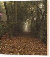 Diferent Paths Wood Print
