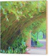 Digital Bamboo Rip Van Winkle Gardens  Wood Print