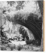 Digital Paint Black White Landscape Louisiana  Wood Print