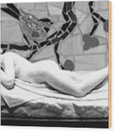 Digital Photography - The Bird Woman Wood Print