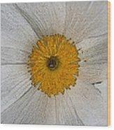 Digital Poppy Wood Print