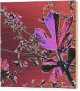 Figtree Leaves 3 Wood Print