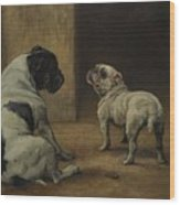 Dignity And Impudence Wood Print