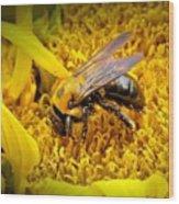 Diligent Pollinating Work Wood Print