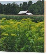 Dill Field Hudson Valley Ny Wood Print