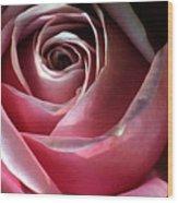 Dimming Rose Wood Print