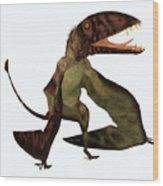 Dimorphodon Pterosaur Wood Print