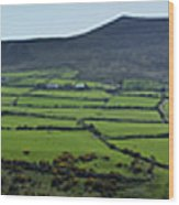 Dingle Peninsula Panorama Ireland Wood Print