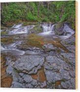 Dingmans Creek II Wood Print