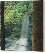 Dingmans Falls Dingmans Ferry Pennsylvania Wood Print
