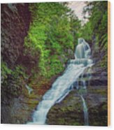 Dingmans Falls Wood Print