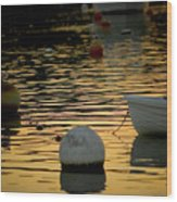 Dingy And Mooring Wood Print