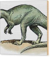 Dinosaur: Allosaurus Wood Print