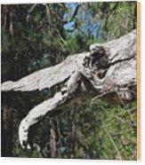 Dinosaur Head Branch Wood Print