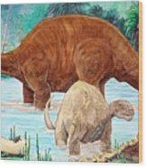 Dinosaur National Monument 140 Million Years Ago Wood Print