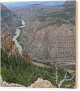 Dinosaur National Monument Wood Print