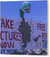 Dinosaur Sign Take Pictures Now Wood Print