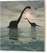 Diplodocus Dinosaurs Bathe In A Large Wood Print