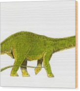 Diplodocus Wood Print