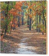 Autumn Scene Dirt Road Wood Print