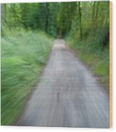 Dirt Path And Surrounding Bush Seen From A Cyclist's Point Of View Wood Print