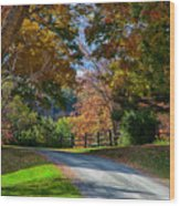 Dirt Road Through Vermont Fall Foliage Wood Print