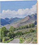 Dirt Road To Serenity Wood Print