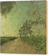 Dirt Road To The Fields Wood Print