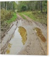 Dirty Autumn Road With Brown Pools After Rain Wood Print