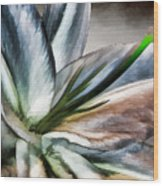 Dirty White Lily 1 Wood Print
