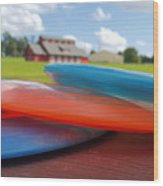 Disc Golf In Auburn Wood Print